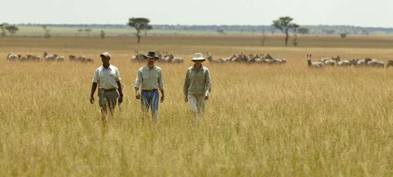 Singita Sasakwa Lodge Game Walk in Serengeti National Park