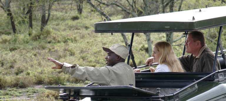 Game Drive with Serengeti Under Canvas in Serengeti National Park