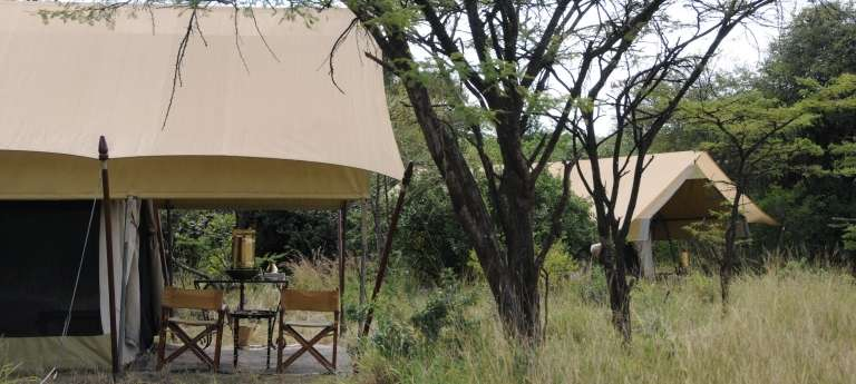 Tents of Serengeti Under Canvas in Serengeti National Park
