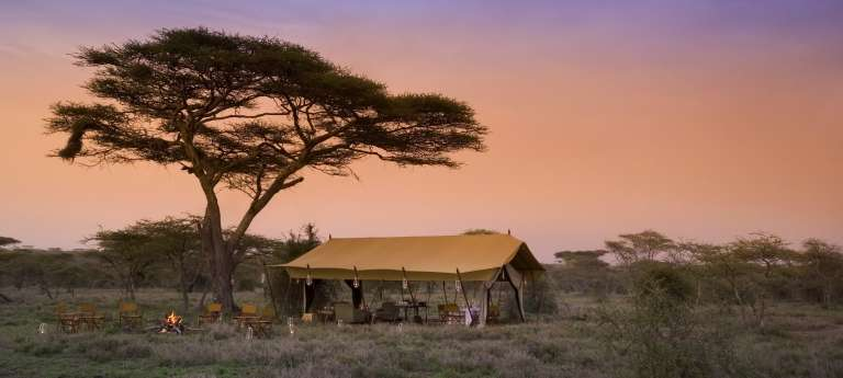 Serengeti Under Canvas at Sunset