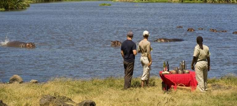Watching hippos at  Ngorongoro Crater, Tanzania