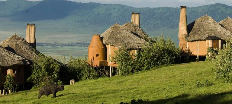 Ngorongoro Crater Lodge Exterior with wildlife, Ngorongoro Crater, Tanzania
