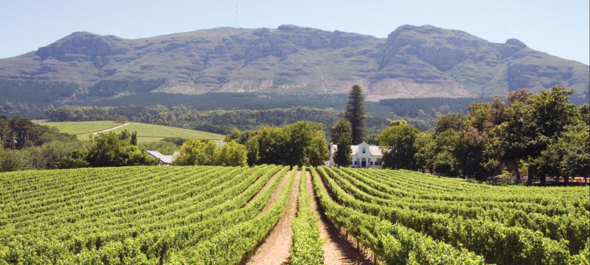 Beautiful-Winelands
