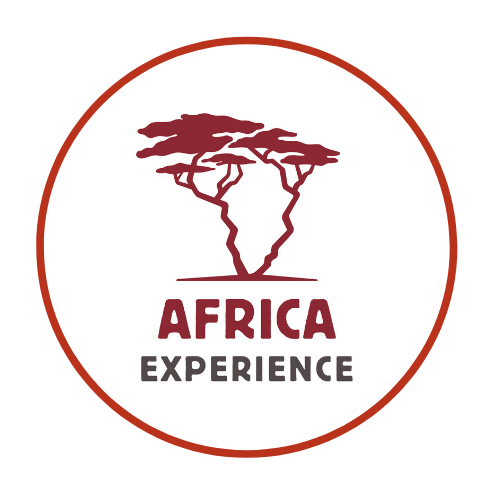 Africa Experience Logo