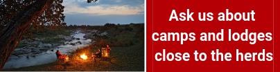 private-serengeti-lodge