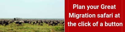 private-great-migration-camps