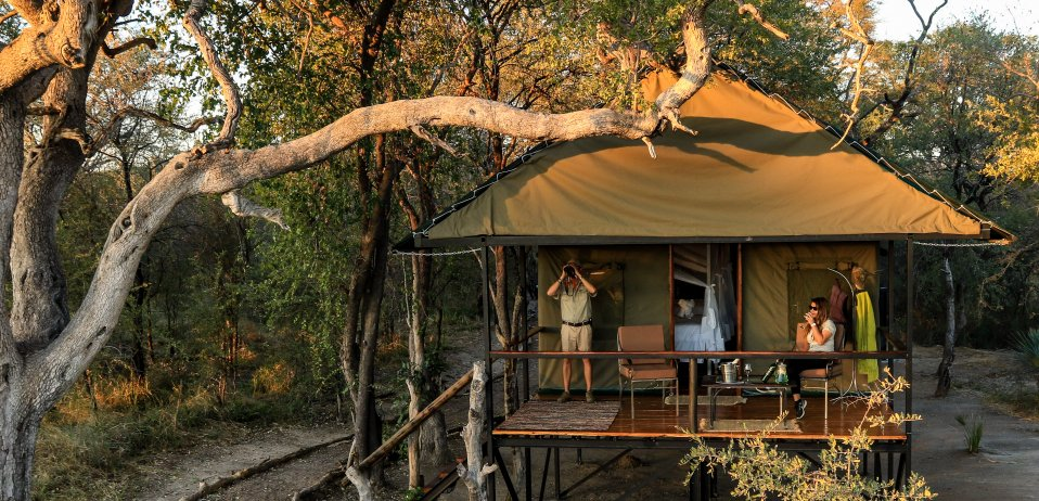 Bomani tented lodge hwange national park in zimbabwe
