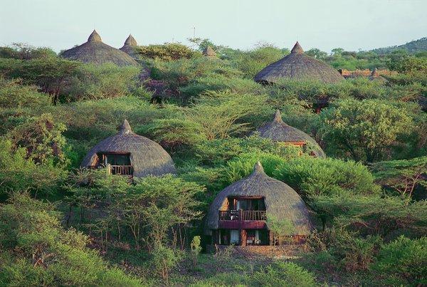 best-safari-tanzania