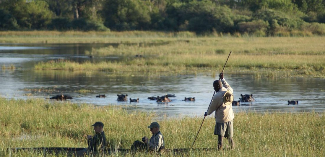 Mokoro rides are a highlight in the southern concessions of the Okavango Delta