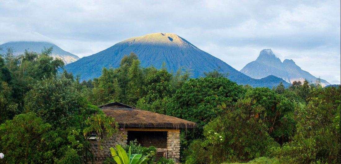 Mountain View Gorilla Lodge