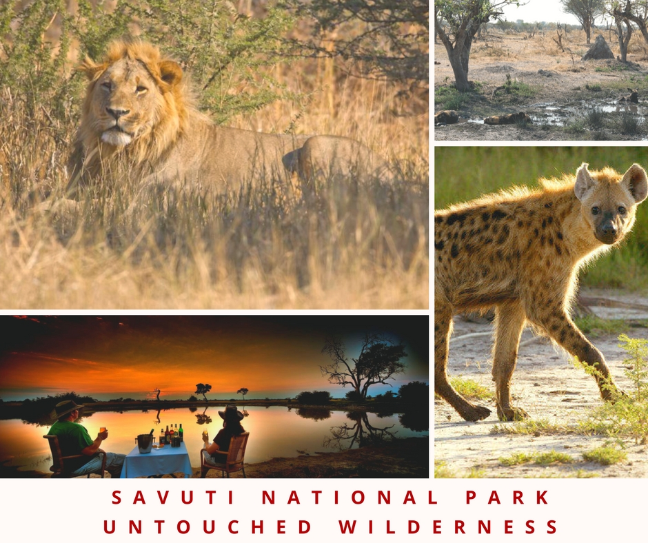botswana game reserves camp savuti