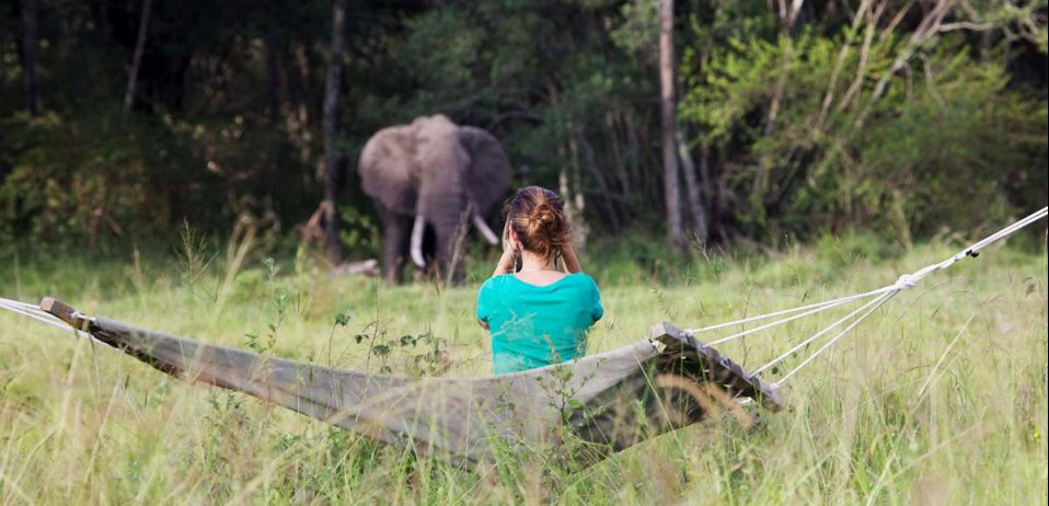 solo travel elewana collection elephant pepper camp