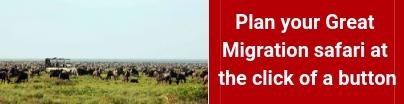 great-migration-safari
