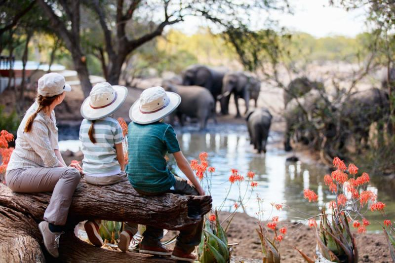 Botswana family safaris will enthrall adults and children, alike