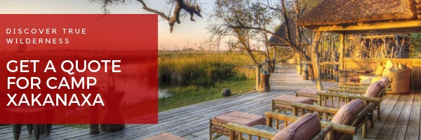accommodation okavango delta botswana safari