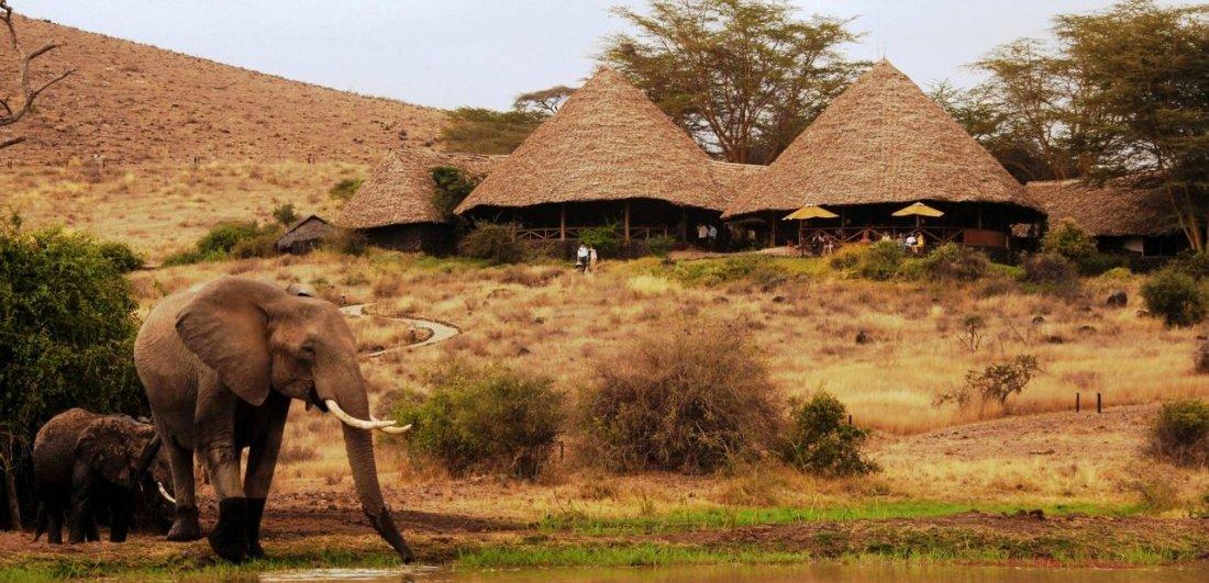 tortilis lodge amboseli national park luxury safari in kenya