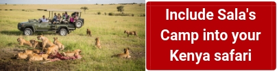 kenya-safari-packages