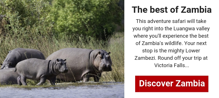safari package zambia