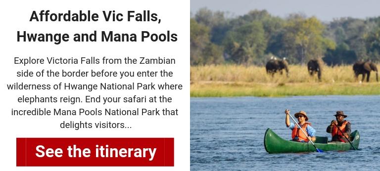 zimbabwe-safari