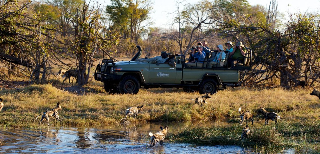 kwando splash camp okavango delta accommodation botswana safari game drive