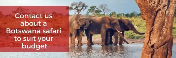 botswana safari prices