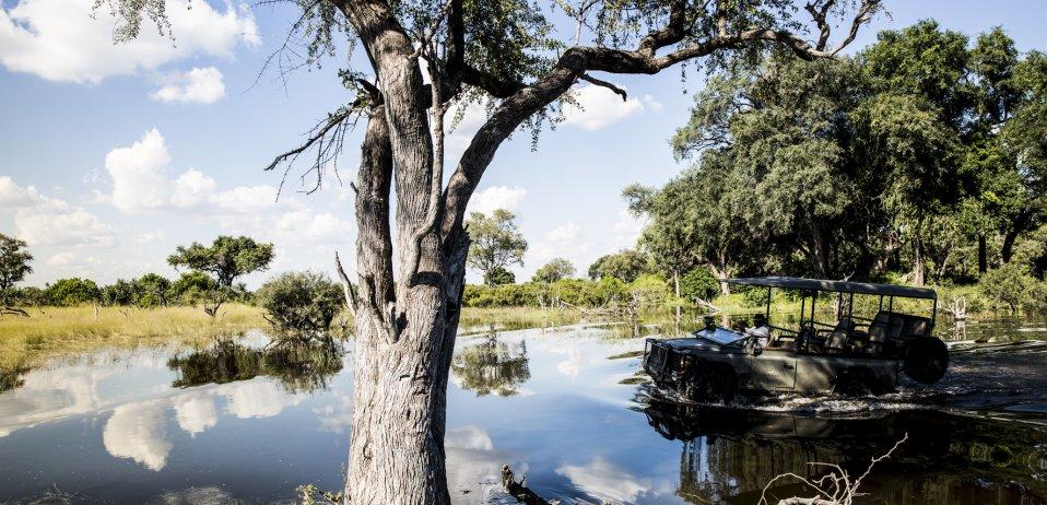 vumbura plains camp okavango delta game drive