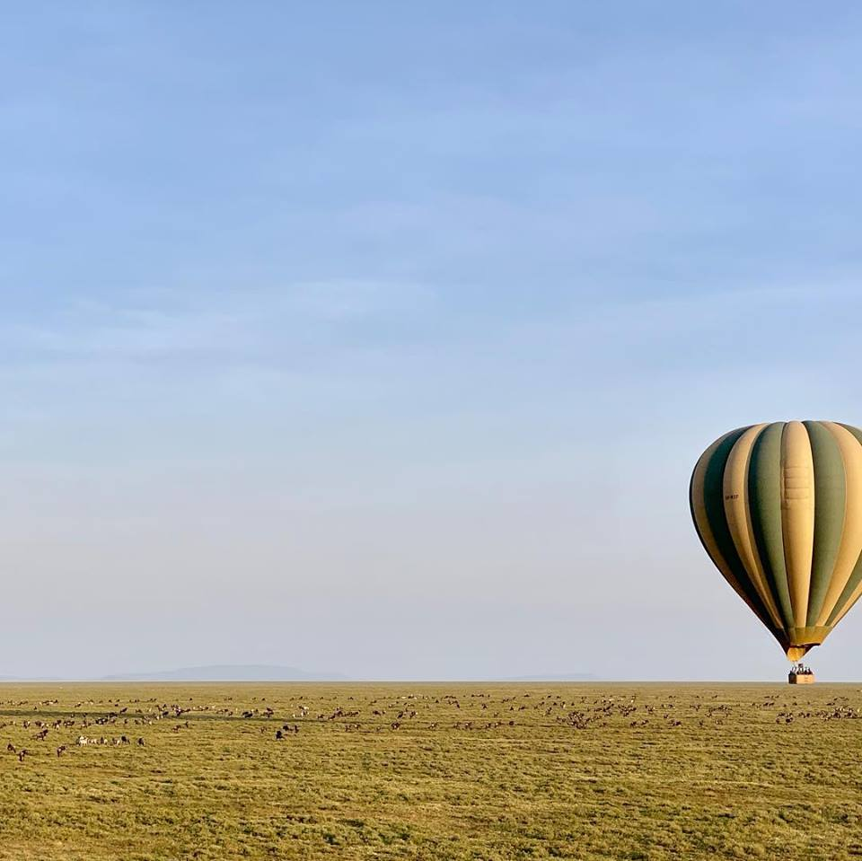 serengeti-balloon-safari