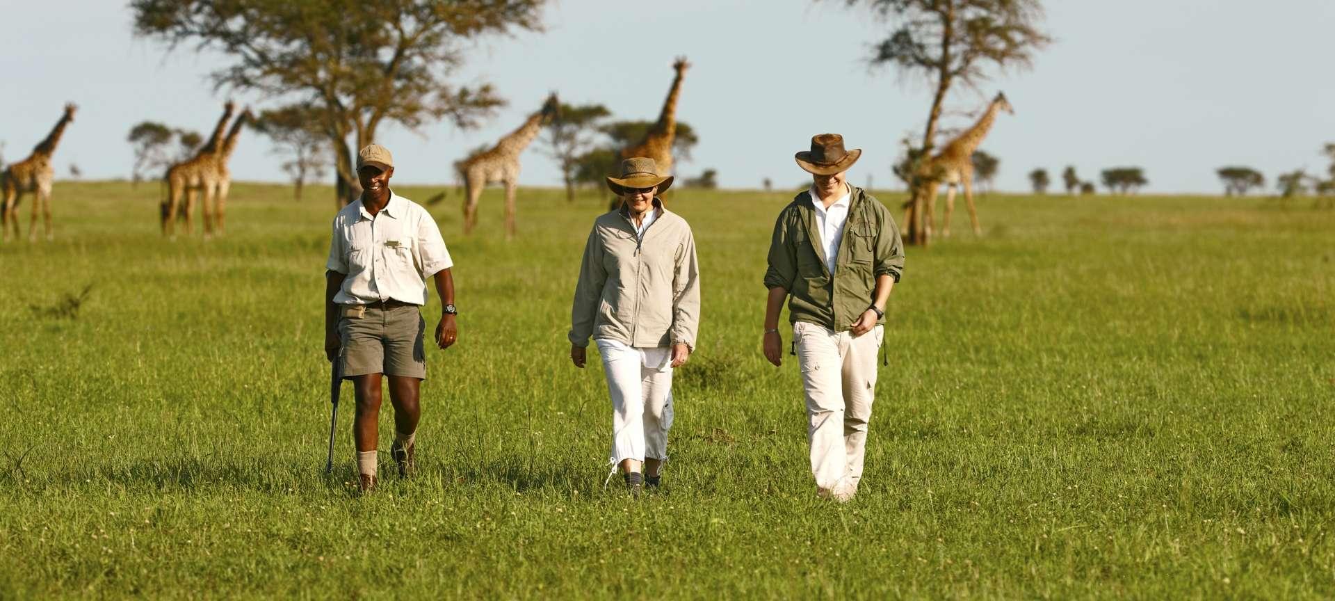 Walking safaris in Africa - Africa Wildlife Safaris