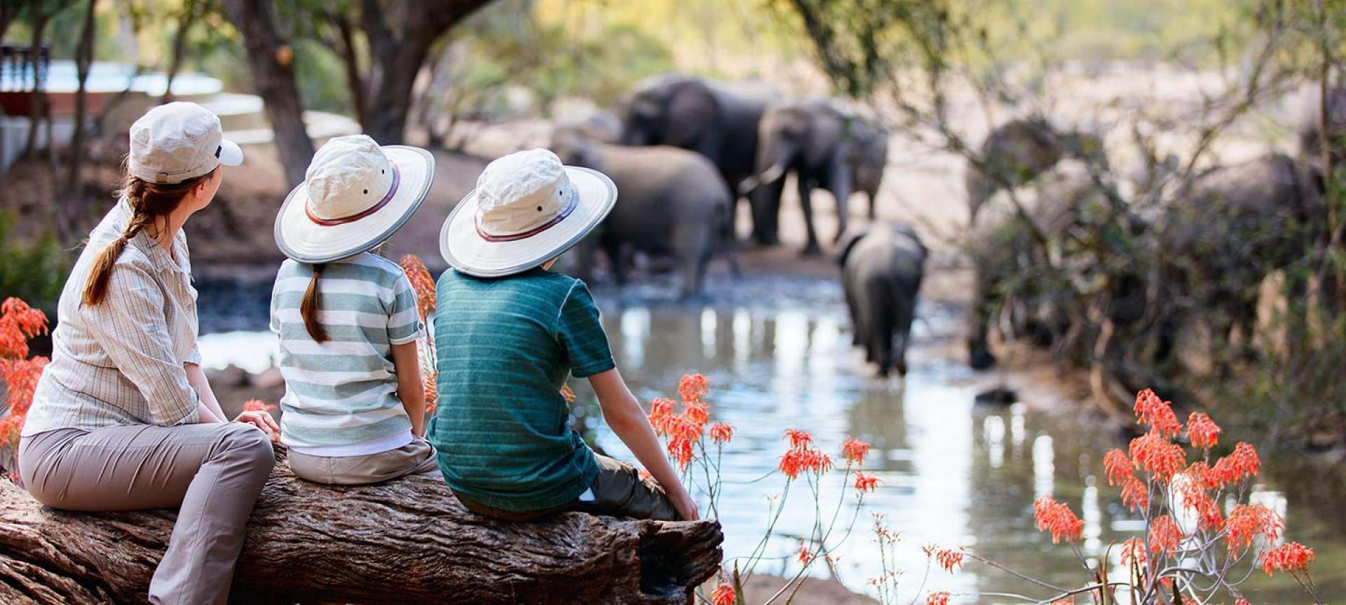 Family & kid friendly safaris in Africa - Africa Wildlife Safaris