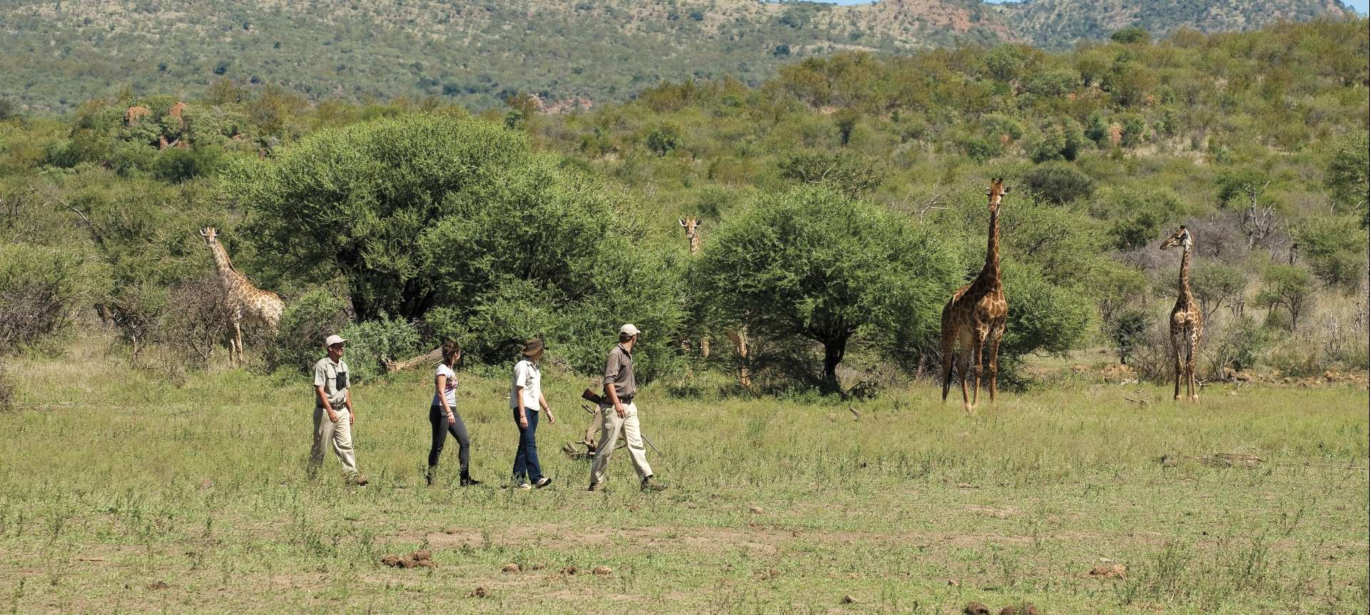 Malaria-free safaris in Africa - Africa Wildlife Safaris