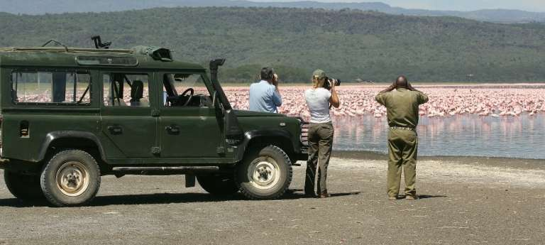 Birding Safaris in Africa