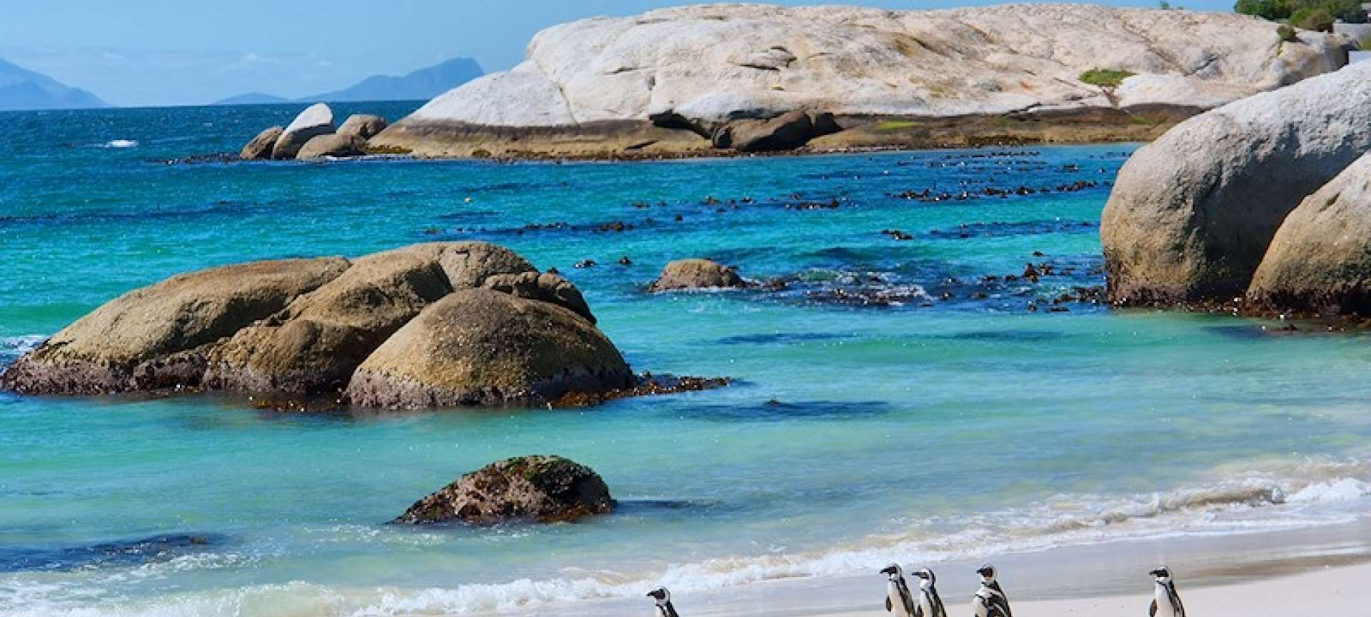Beach holidays in South Africa - Africa Wildlife Safaris