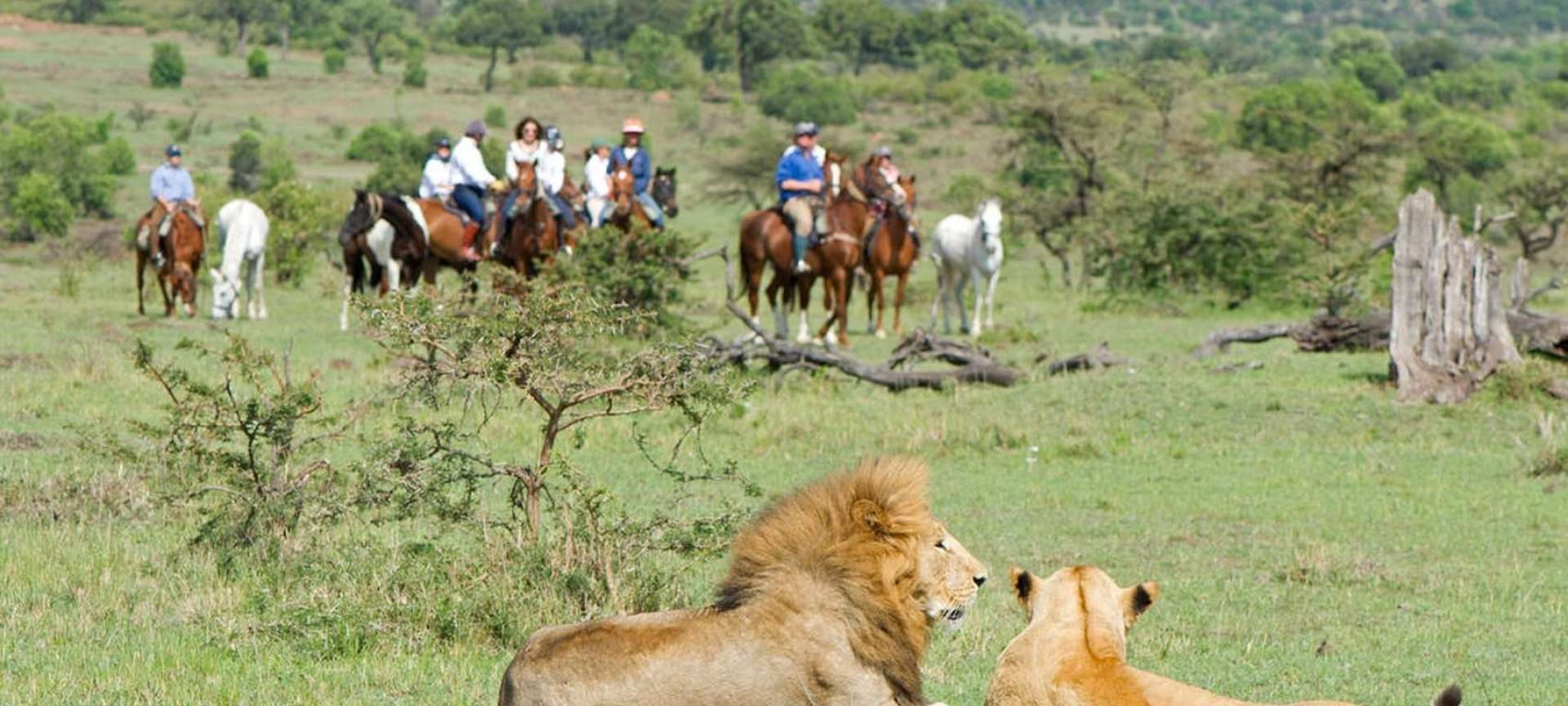 Horseback Safaris in Kenya - Africa Wildlife Safaris
