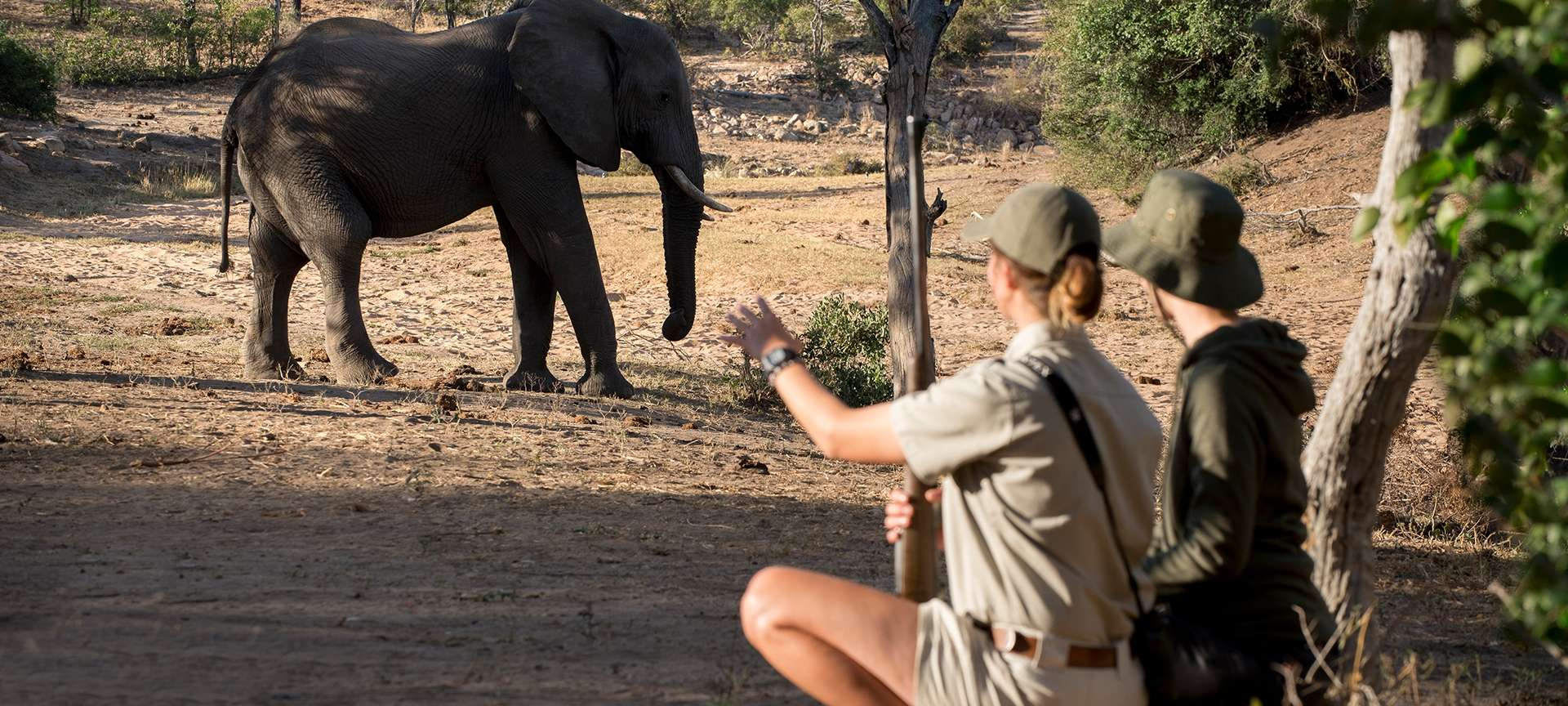 Walking safaris in the Kruger National Park - Africa Wildlife Safaris