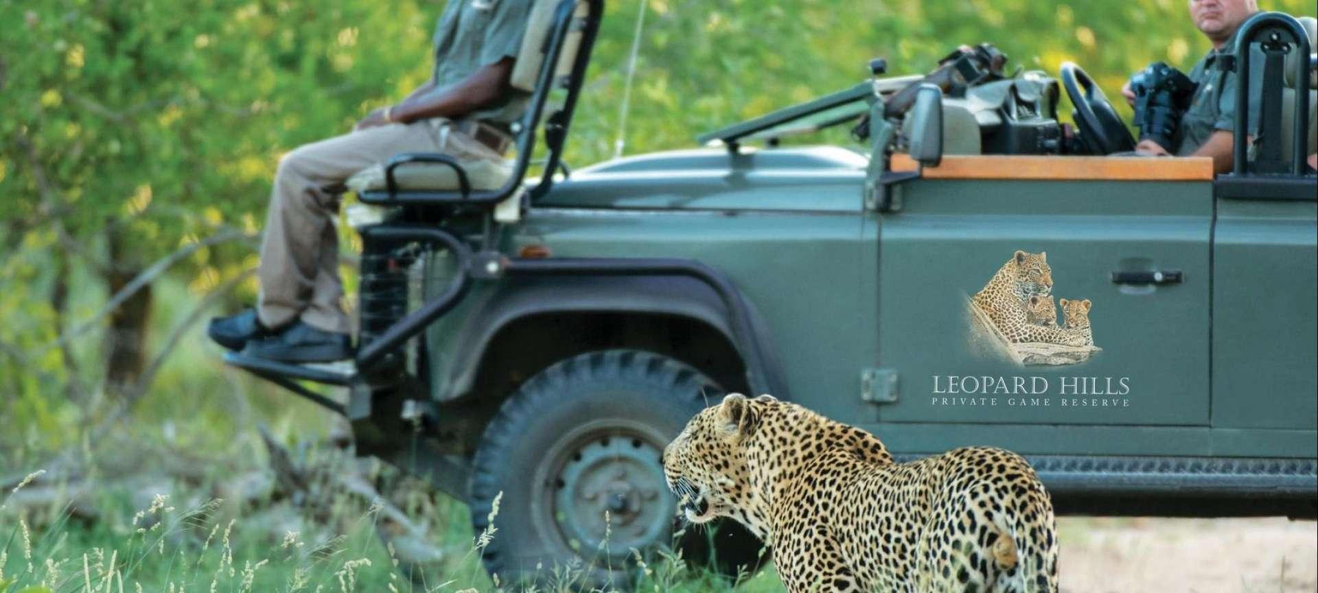 Luxury safaris in the Kruger - Africa Wildlife Safaris