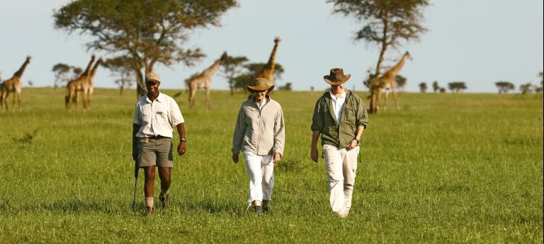 | Nature, Romance, Exclusivity and Luxury - A Complete African Honeymoon