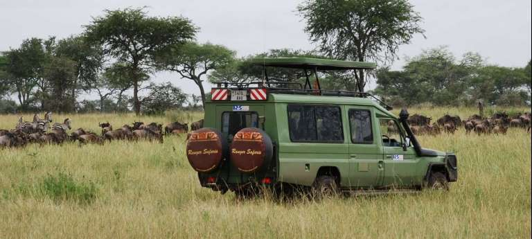 Tanzania wildebeest migration safari