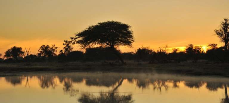 | Victoria Falls, Matusadona and Hwange water and wildlife safari