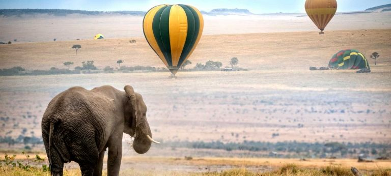 | Masai Mara Safari Adventure (6 days)