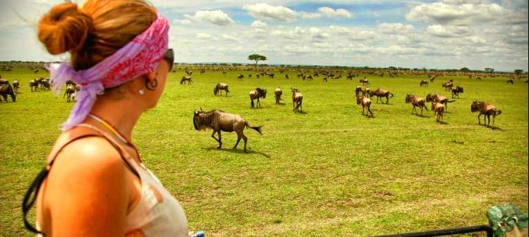Green Season Wildebeest Migration Safari (11 days)