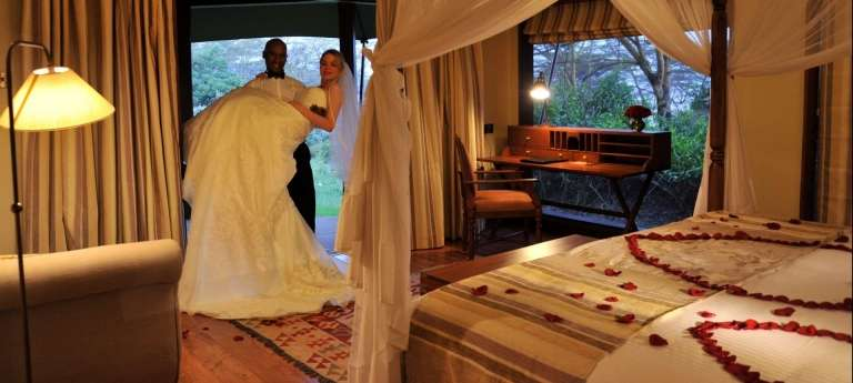 | Honeymoon safari in the Serengeti National Park