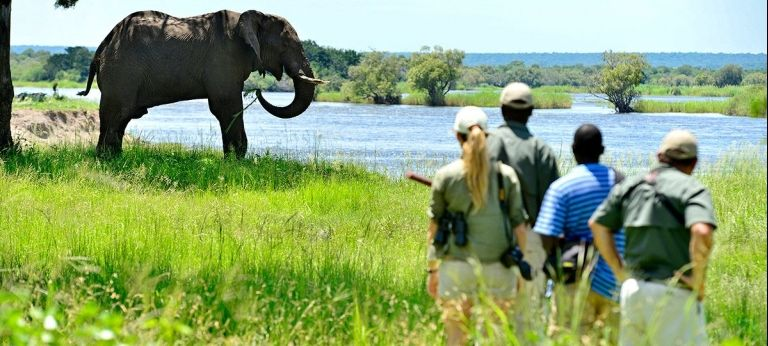 | Waterfalls and Wildlife: Victoria Falls and Chobe National Park Journey (7 days)