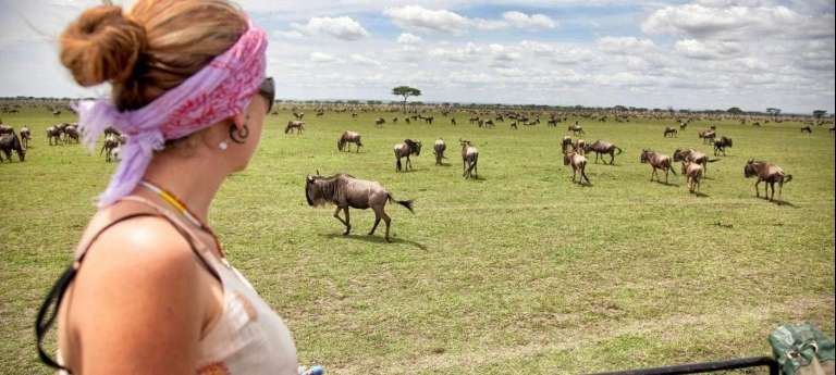 Tanzania July/October Great Migration safari with HerdTracker - Africa Wildlife Safaris