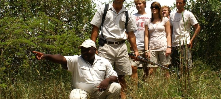 | Blissful Fly-In Kruger Safari (4 days)