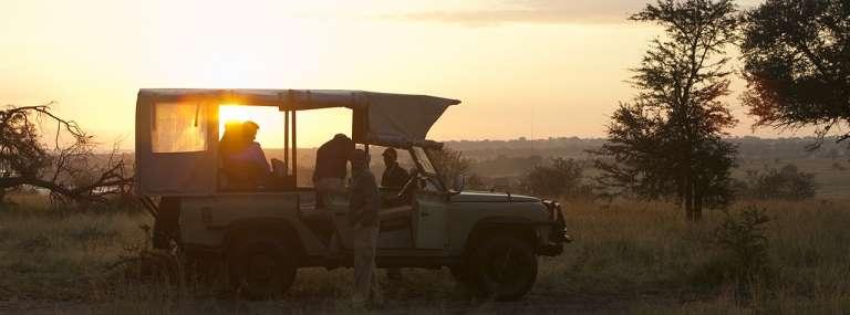 Short and Sweet Serengeti Safari