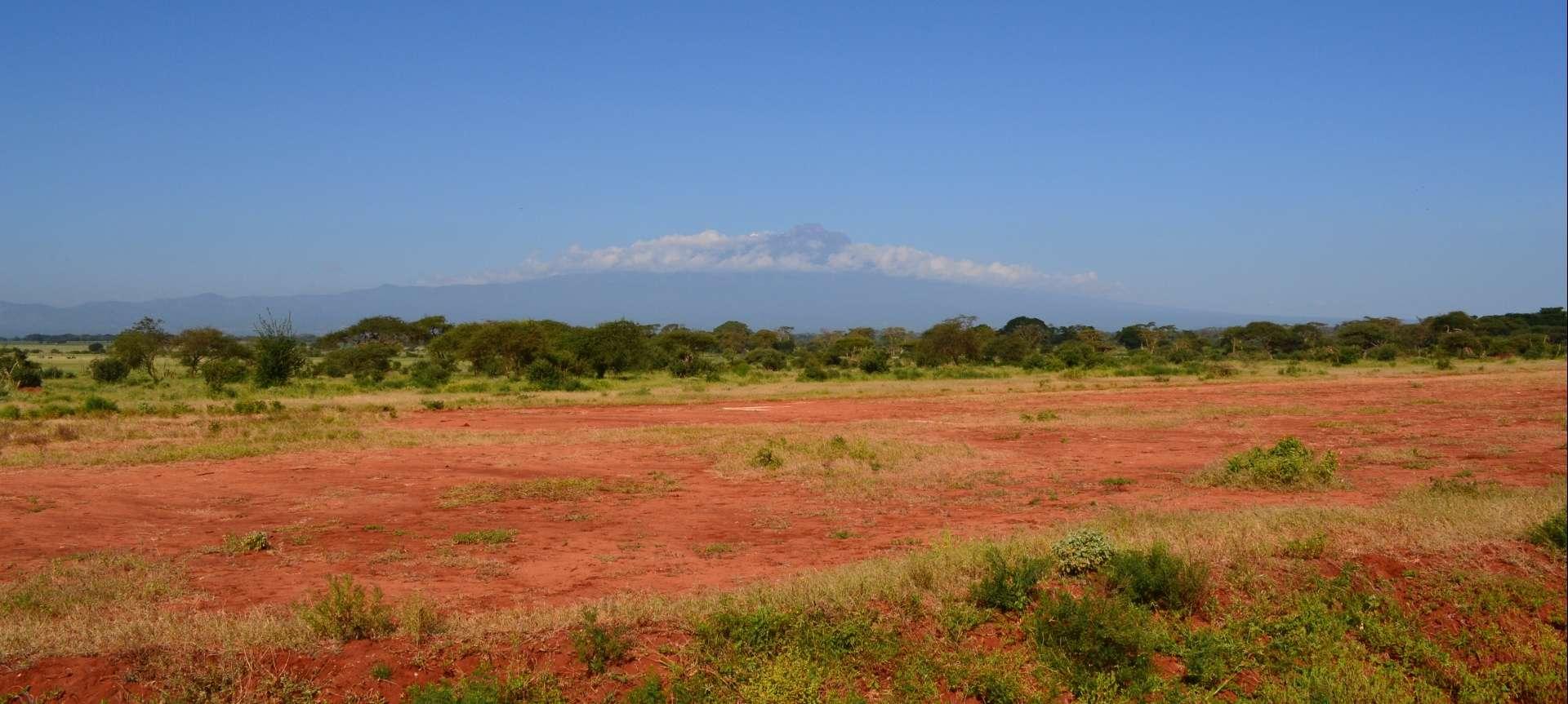 West Kilimanjaro - Africa Wildlife Safaris