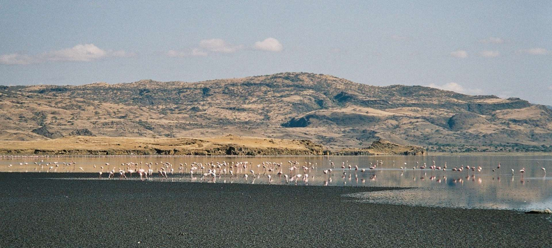 Lake Natron - Africa Wildlife Safaris
