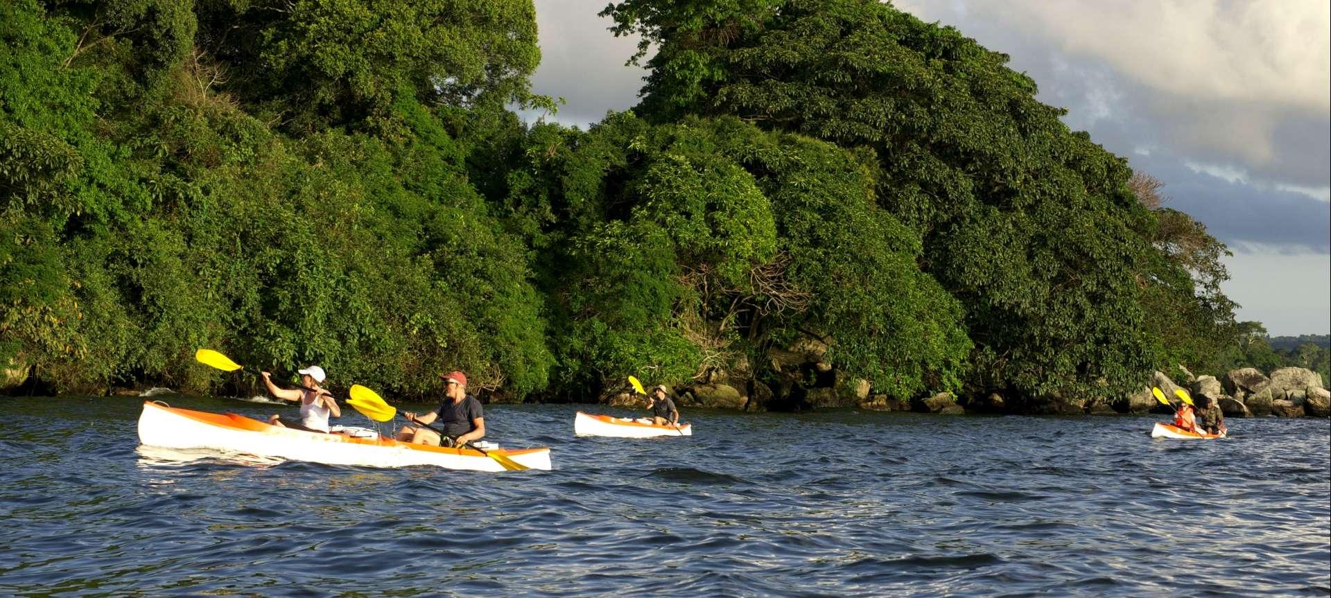 Rubondo Island - Africa Wildlife Safaris