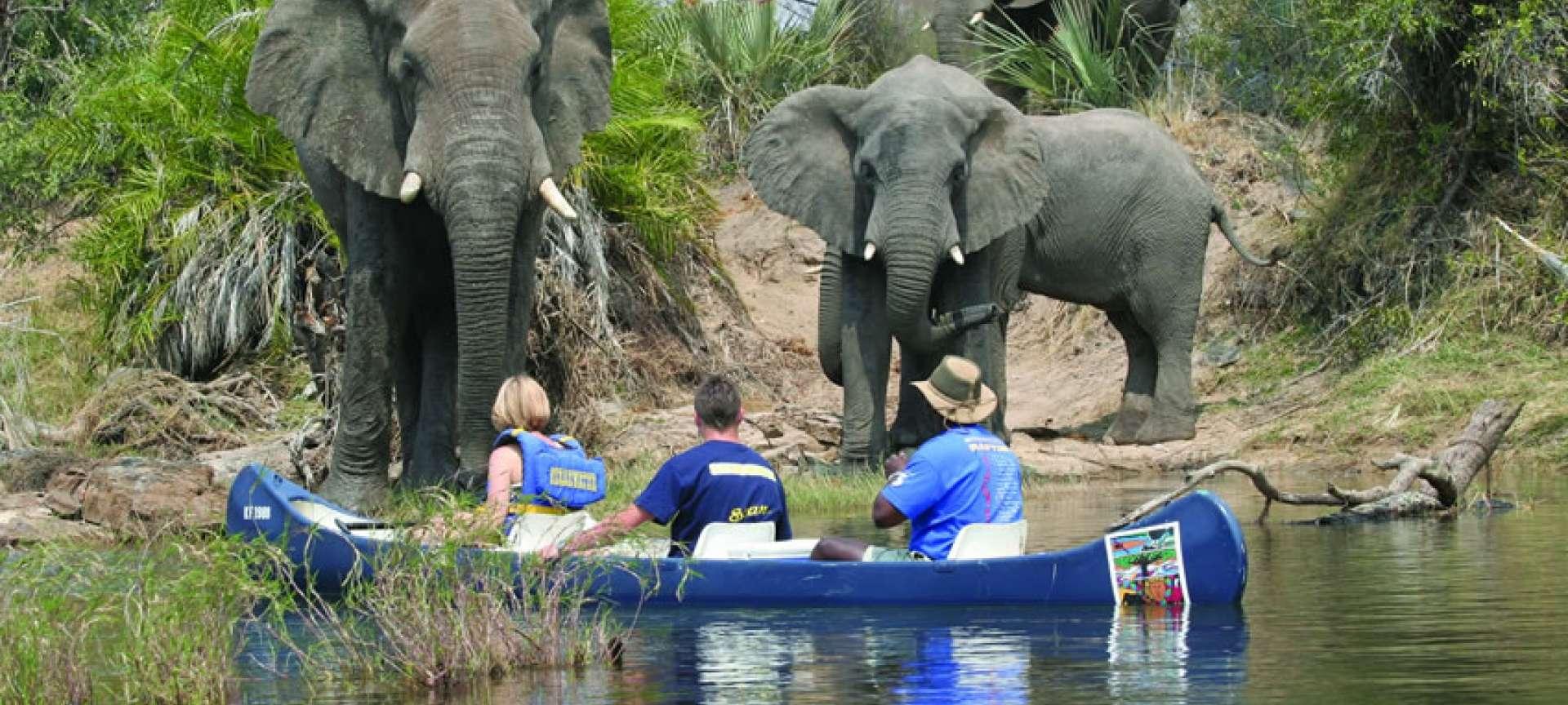 Upper Zambezi River - Africa Wildlife Safaris