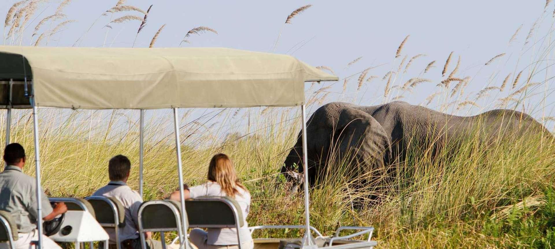 Northern Botswana - Africa Wildlife Safaris